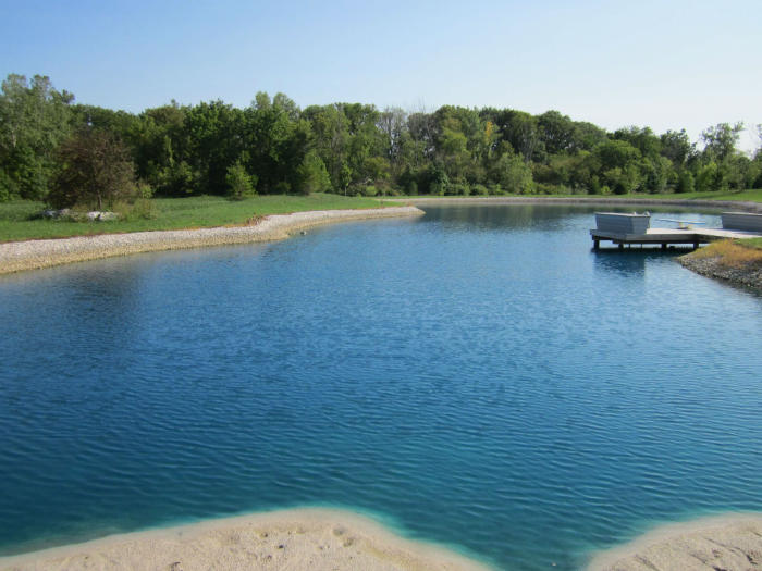 Pond maintenance with blue colorant dye