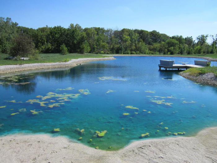 Blue pond suffering from pond algae