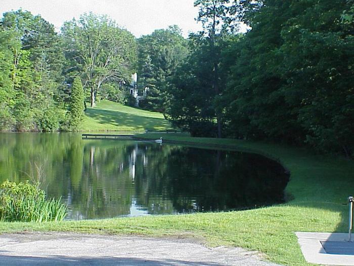 What Aqua Doc pond maintenance and algae control can do for you