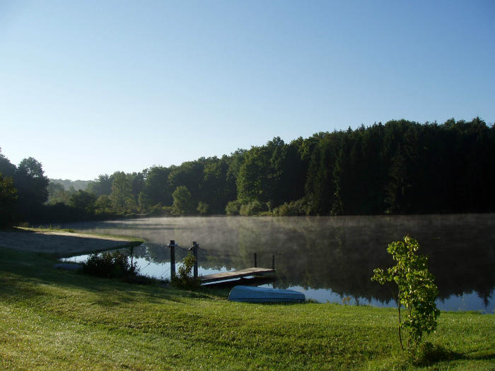 Professional pond maintenance and algae control help lakes and ponds look amazing