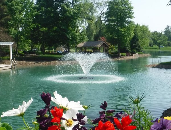 Masters decorative pond fountain with standard panel