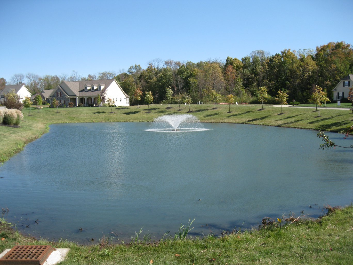 After Aqua Doc cattail removal services