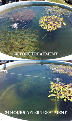 Milfoil control and algae control from Aqua Doc